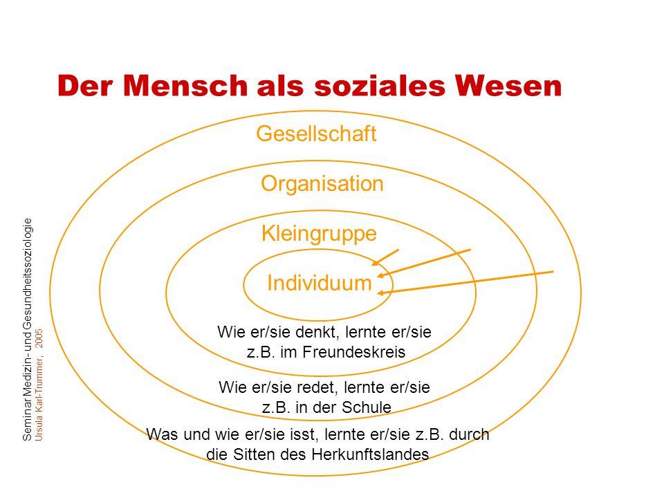 Seminar Medizin- und Gesundheitssoziologie Ursula Karl-Trummer, 2005 Der Mensch als soziales Wesen Individuum Kleingruppe Organisation Gesellschaft Wi