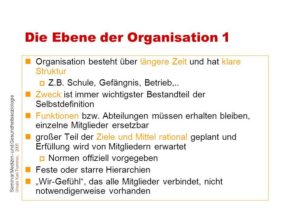 Seminar Medizin- und Gesundheitssoziologie Ursula Karl-Trummer, 2005 Die Ebene der Organisation 1 Organisation besteht über längere Zeit und hat klare