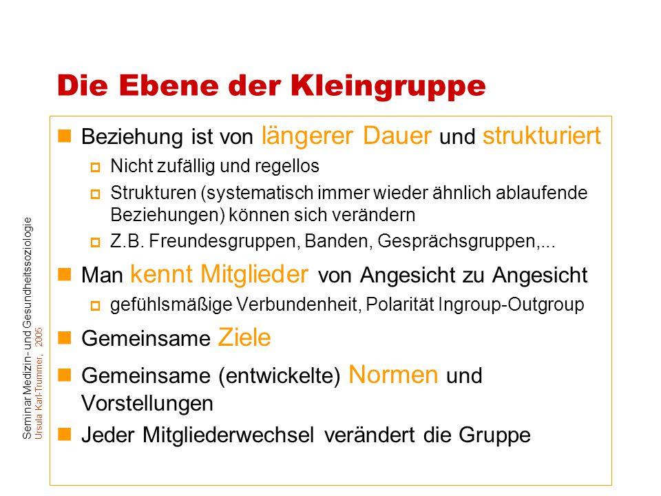 Seminar Medizin- und Gesundheitssoziologie Ursula Karl-Trummer, 2005 Die Ebene der Kleingruppe Beziehung ist von längerer Dauer und strukturiert  Nic