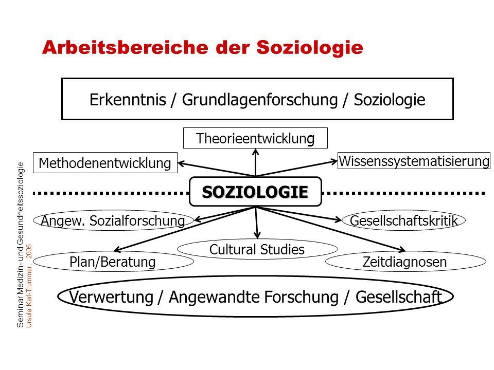 Seminar Medizin- und Gesundheitssoziologie Ursula Karl-Trummer, 2005 Arbeitsbereiche der Soziologie Verwertung / Angewandte Forschung / Gesellschaft E