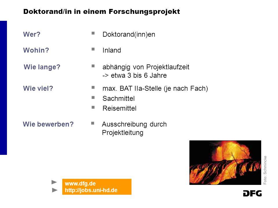 Doktorand/in in einem Forschungsprojekt Wer. Doktorand(inn)en Wohin.