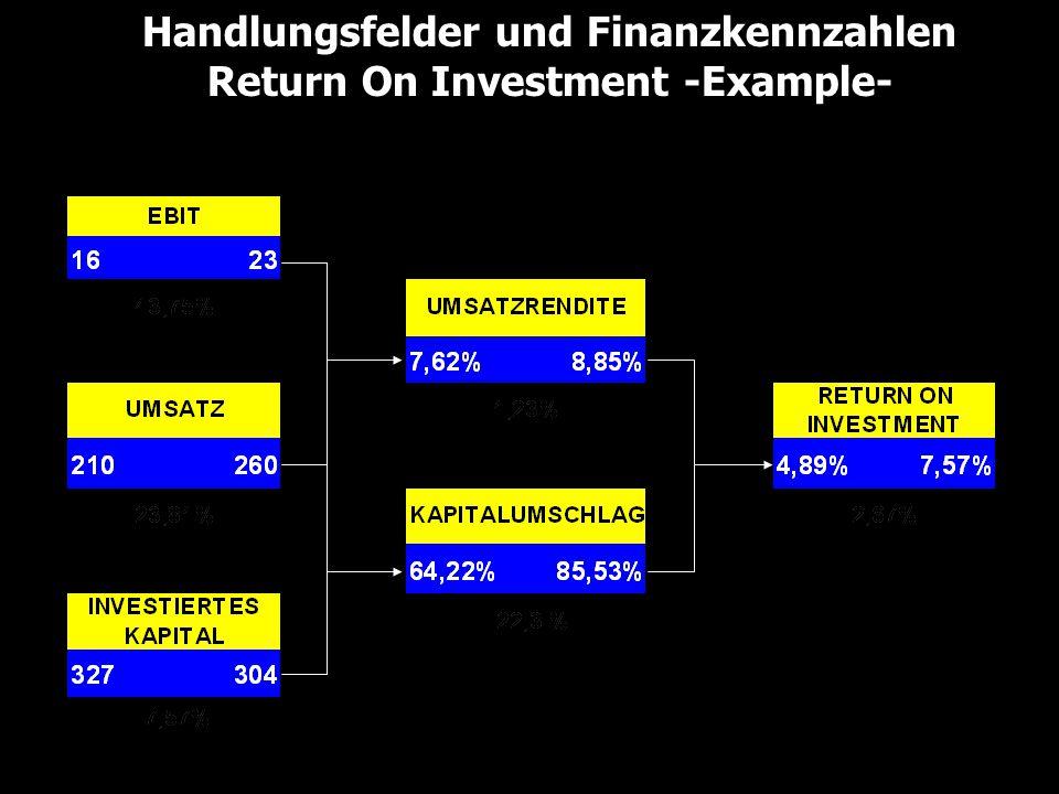 Handlungsfelder und Finanzkennzahlen Return On Investment -Example-