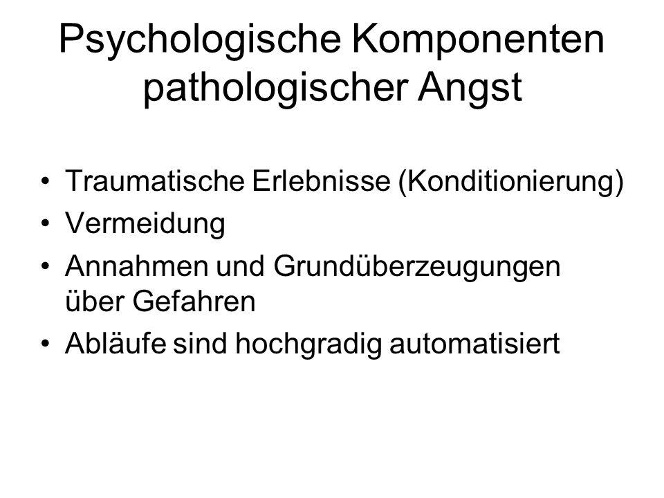 Psychologische Komponenten pathologischer Angst Traumatische Erlebnisse (Konditionierung) Vermeidung Annahmen und Grundüberzeugungen über Gefahren Abl