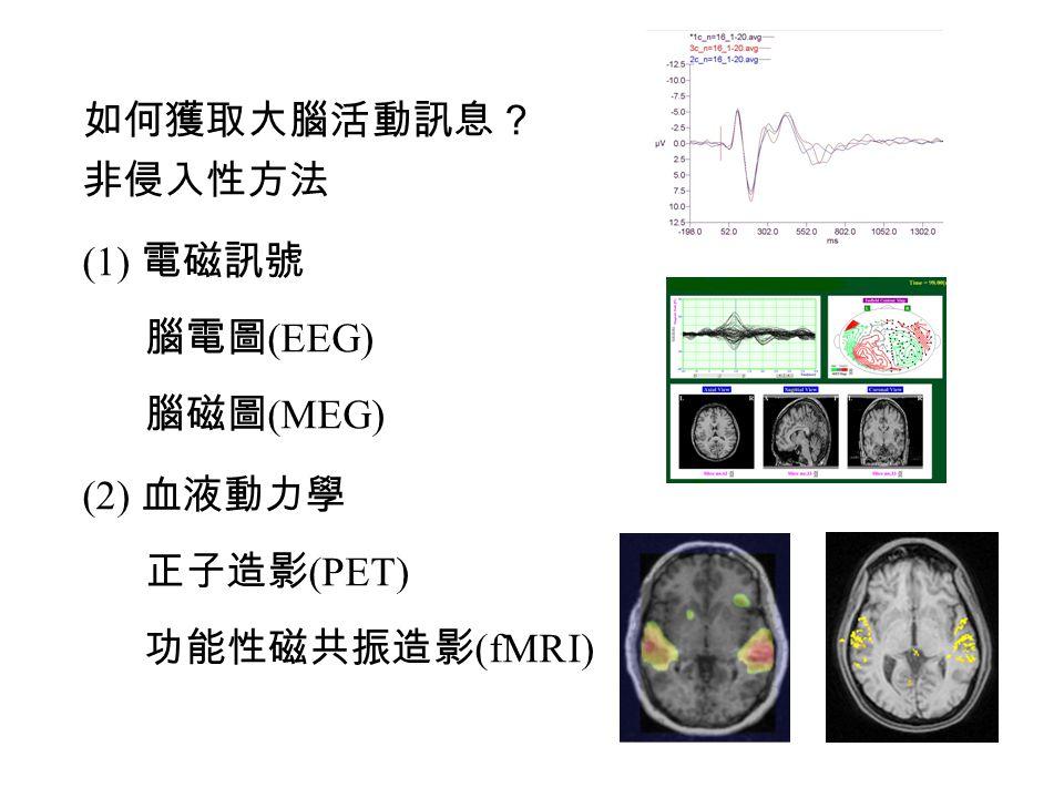 如何獲取大腦活動訊息? 非侵入性方法 (1) 電磁訊號 腦電圖 (EEG) 腦磁圖 (MEG) (2) 血液動力學 正子造影 (PET) 功能性磁共振造影 (fMRI)