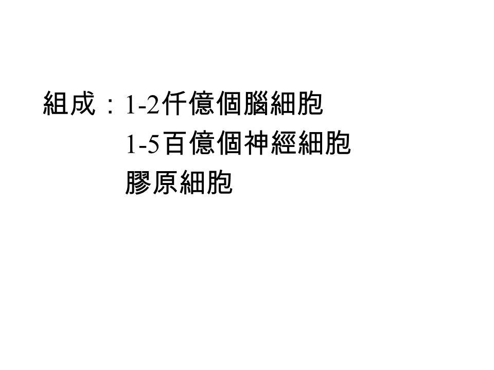 EEG/MEG 易受雜訊干擾 逆問題的解不是唯一確定。 分布源模型:頭以 n 個格點佈滿,每個格點 3 個源 (x, y, z 方向 ) ,頭皮外 m 個量測位置。 b: m 個量測數據, m  1 矩陣 s: 源強度, 3n  1 矩陣 A: lead field matrix , m  3n 矩陣