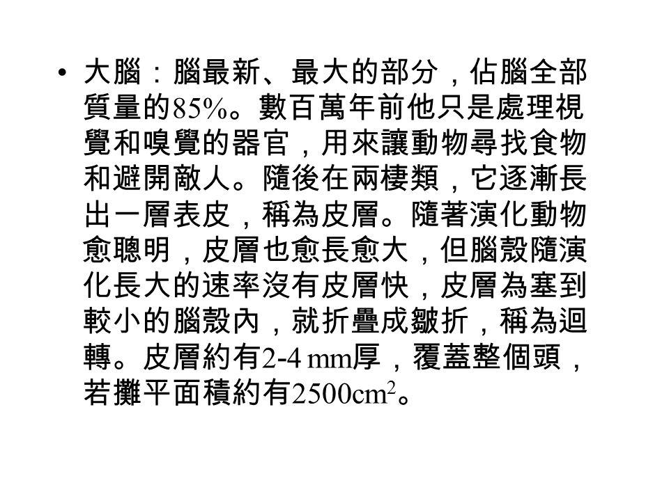 格點空間: 3 維空間 n 個格點,構成 3n 維格點空 間。 源空間:分布於 3n 維格點空間的源構成的空間, 維數 , N i 為分布於格點空間 第 i 維的源數目。 MNP 為源空間之解。 格點空間之解: N 為 3n  3n 矩陣,對角線元素為 N i 。