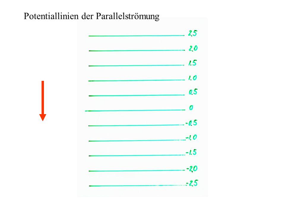 Potentiallinien der Parallelströmung