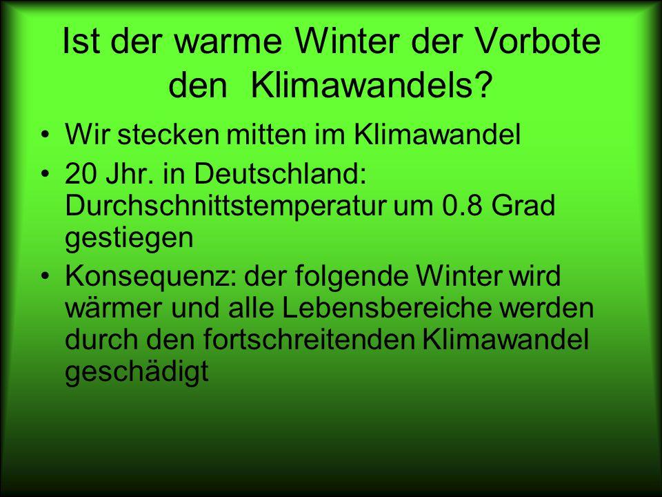 Ist der warme Winter der Vorbote den Klimawandels? Wir stecken mitten im Klimawandel 20 Jhr. in Deutschland: Durchschnittstemperatur um 0.8 Grad gesti