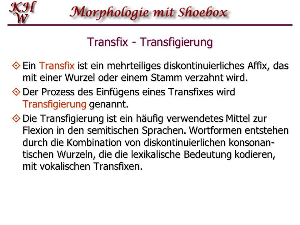 Transfix - Transfigierung  Ein Transfix ist ein mehrteiliges diskontinuierliches Affix, das mit einer Wurzel oder einem Stamm verzahnt wird.  Der Pr