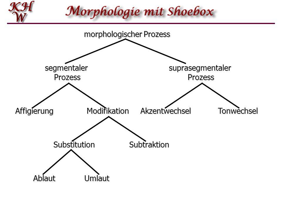 morphologischer Prozess segmentaler Prozess suprasegmentaler Prozess AffigierungModifikationAkzentwechselTonwechsel SubtraktionSubstitution AblautUmla