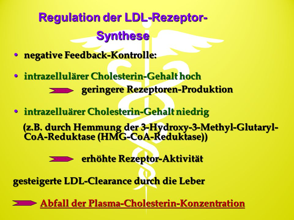 Regulation der LDL-Rezeptor- Synthese negative Feedback-Kontrolle: negative Feedback-Kontrolle: intrazellulärer Cholesterin-Gehalt hoch intrazelluläre