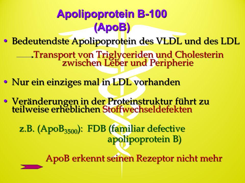 Apolipoprotein B-100 (ApoB) Bedeutendste Apolipoprotein des VLDL und des LDLBedeutendste Apolipoprotein des VLDL und des LDL Transport von Triglycerid
