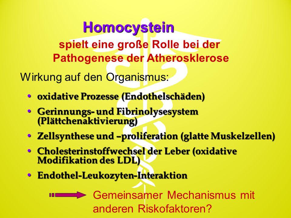 Homocystein oxidative Prozesse (Endothelschäden) oxidative Prozesse (Endothelschäden) Gerinnungs- und Fibrinolysesystem (Plättchenaktivierung) Gerinnu