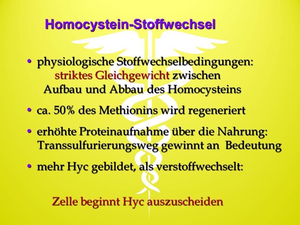 Homocystein-Stoffwechsel physiologische Stoffwechselbedingungen:physiologische Stoffwechselbedingungen: striktes Gleichgewicht zwischen striktes Gleic
