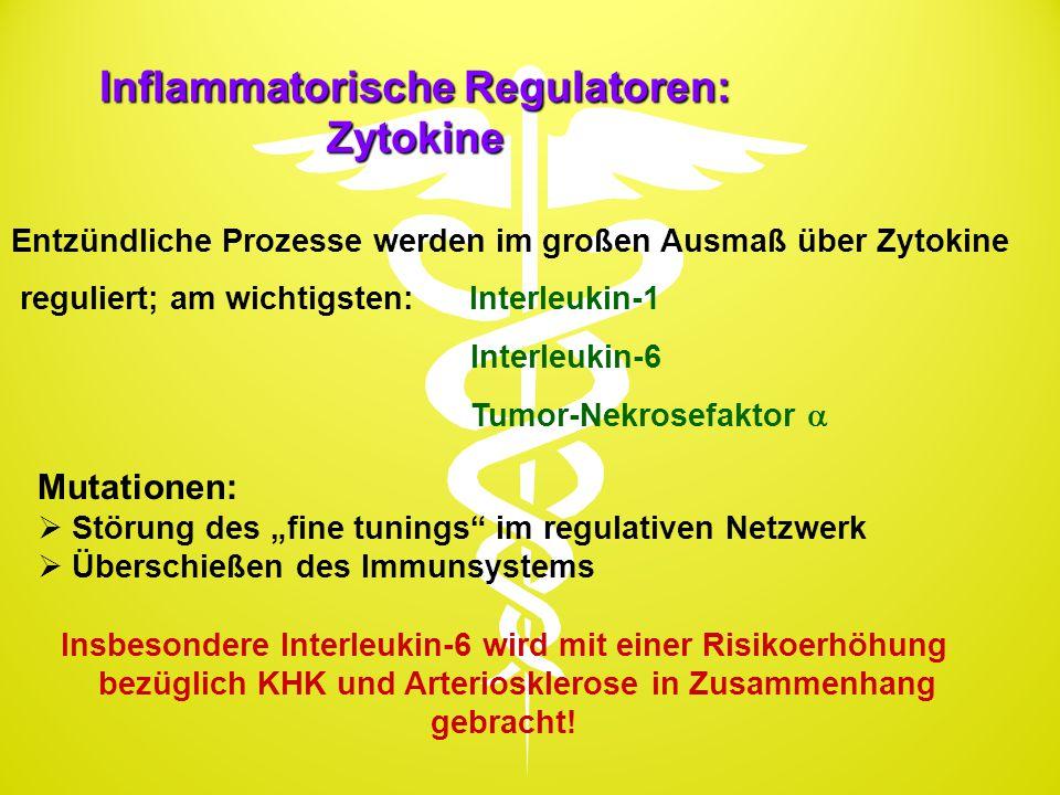 Inflammatorische Regulatoren: Zytokine Entzündliche Prozesse werden im großen Ausmaß über Zytokine reguliert; am wichtigsten: Interleukin-1 Interleuki
