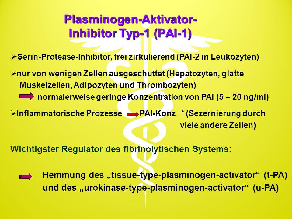 Plasminogen-Aktivator- Inhibitor Typ-1 (PAI-1)  Serin-Protease-Inhibitor, frei zirkulierend (PAI-2 in Leukozyten)  nur von wenigen Zellen ausgeschüt