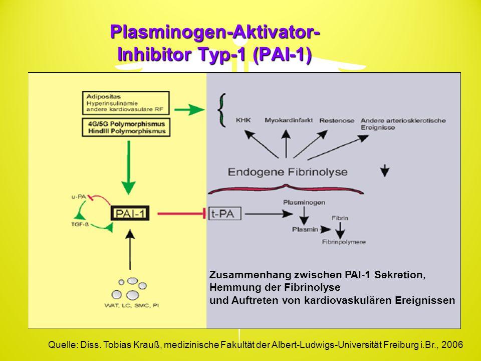 Plasminogen-Aktivator- Inhibitor Typ-1 (PAI-1) Zusammenhang zwischen PAI-1 Sekretion, Hemmung der Fibrinolyse und Auftreten von kardiovaskulären Ereig