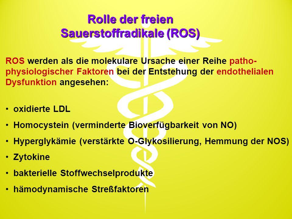 Rolle der freien Sauerstoffradikale (ROS) ROS werden als die molekulare Ursache einer Reihe patho- physiologischer Faktoren bei der Entstehung der end