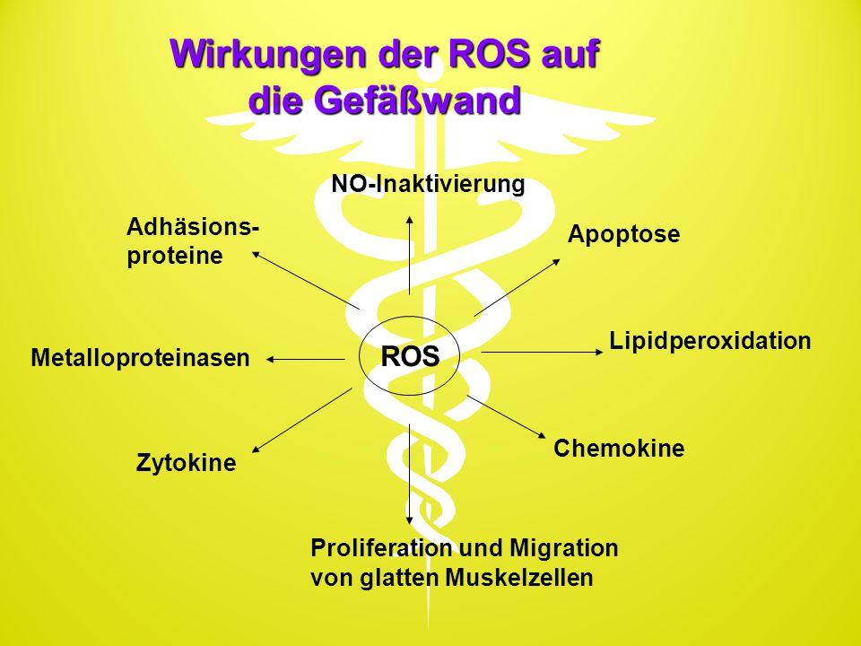 Wirkungen der ROS auf die Gefäßwand ROS NO-Inaktivierung Apoptose Lipidperoxidation Chemokine Proliferation und Migration von glatten Muskelzellen Zyt