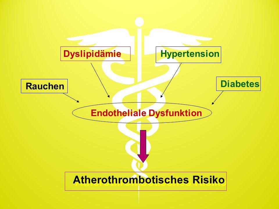 Endotheliale Dysfunktion Rauchen Dyslipidämie Hypertension Diabetes Atherothrombotisches Risiko