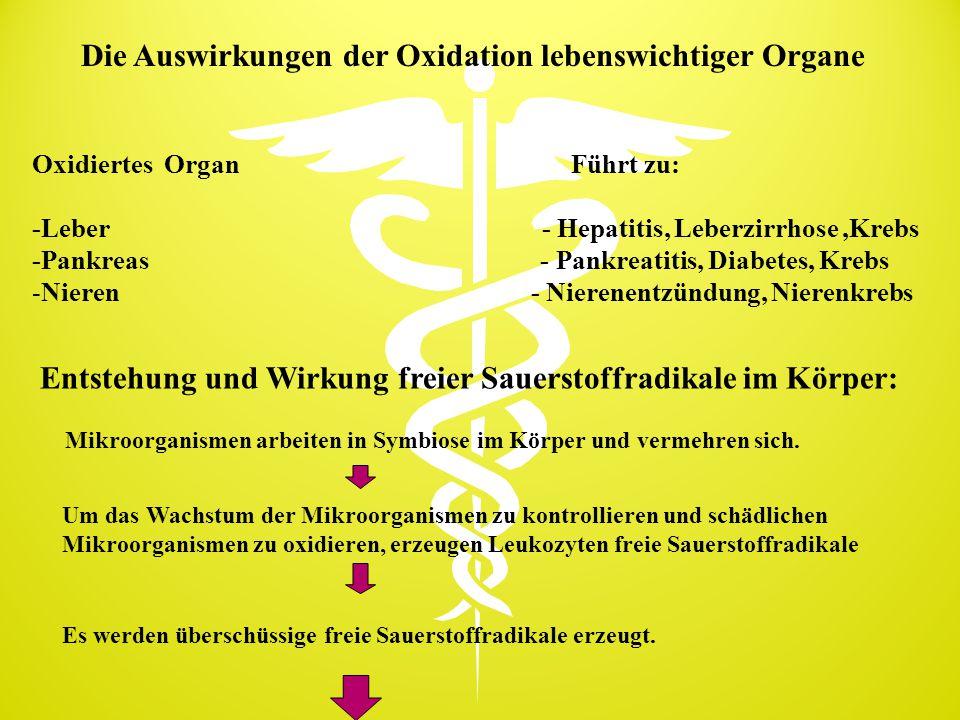 Die Auswirkungen der Oxidation lebenswichtiger Organe Oxidiertes Organ Führt zu: -Leber - Hepatitis, Leberzirrhose,Krebs -Pankreas - Pankreatitis, Dia