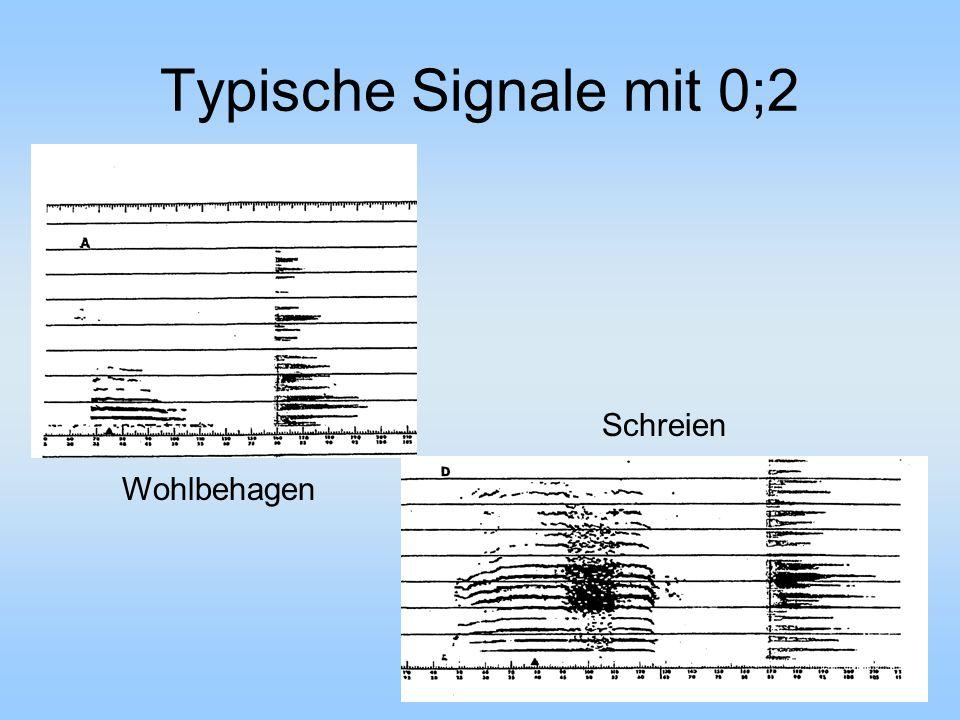 Typische Signale mit 0;2 Schreien Wohlbehagen