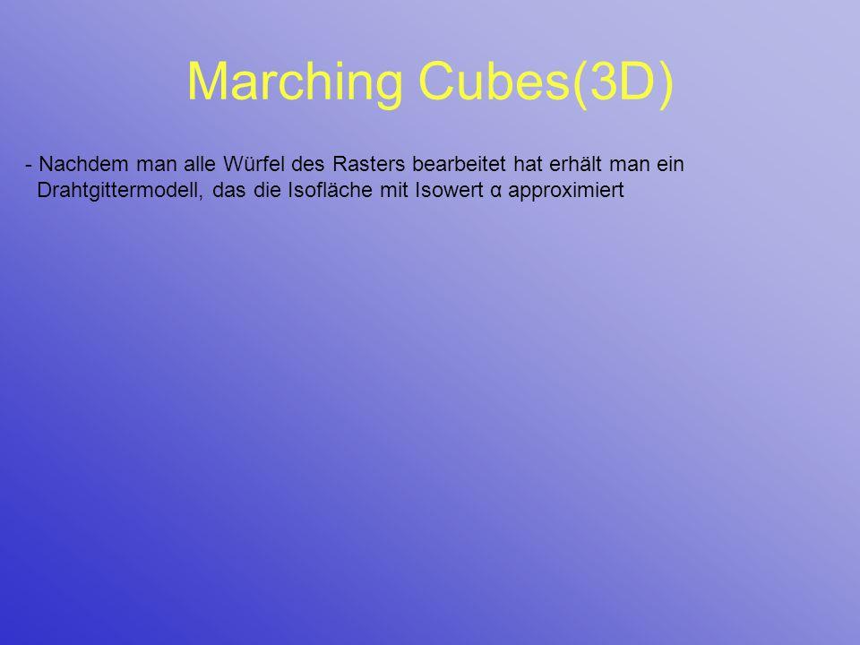 Marching Cubes(3D) - Nachdem man alle Würfel des Rasters bearbeitet hat erhält man ein Drahtgittermodell, das die Isofläche mit Isowert α approximiert