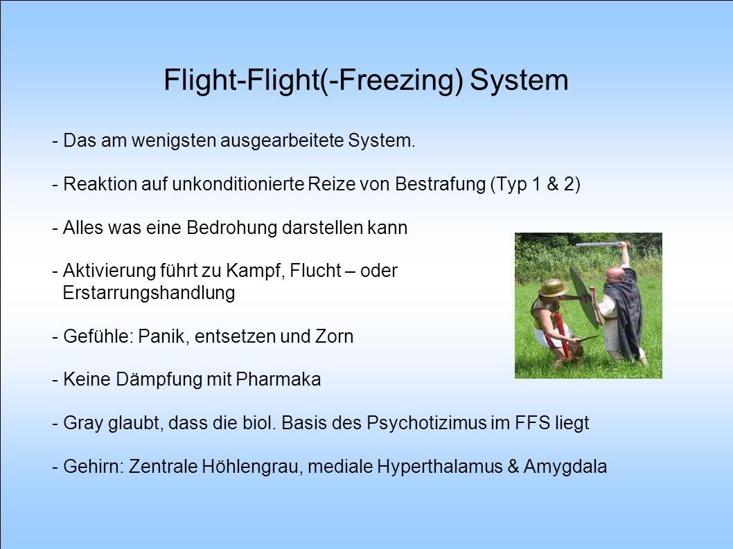 Flight-Flight(-Freezing) System - Das am wenigsten ausgearbeitete System. - Reaktion auf unkonditionierte Reize von Bestrafung (Typ 1 & 2) - Alles was