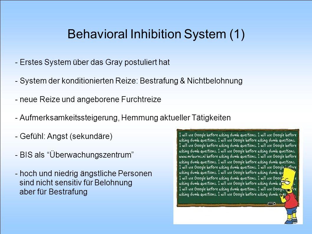 Behavioral Inhibition System (2) - weit verzweigtes System im Gehirn - Zentrum ist das septo-hippocampale System und Papez-Kreis - perirhinalen und parahippocampalen Cortex: liefert Informationen über den tatsächlichen Zustand der Welt - Hirnstamm und präfrontalen Cortex - Papez-Kreis: Vorhersagen über den erwarteten Zustand der Welt - Subiculum - Reihe von Fasern