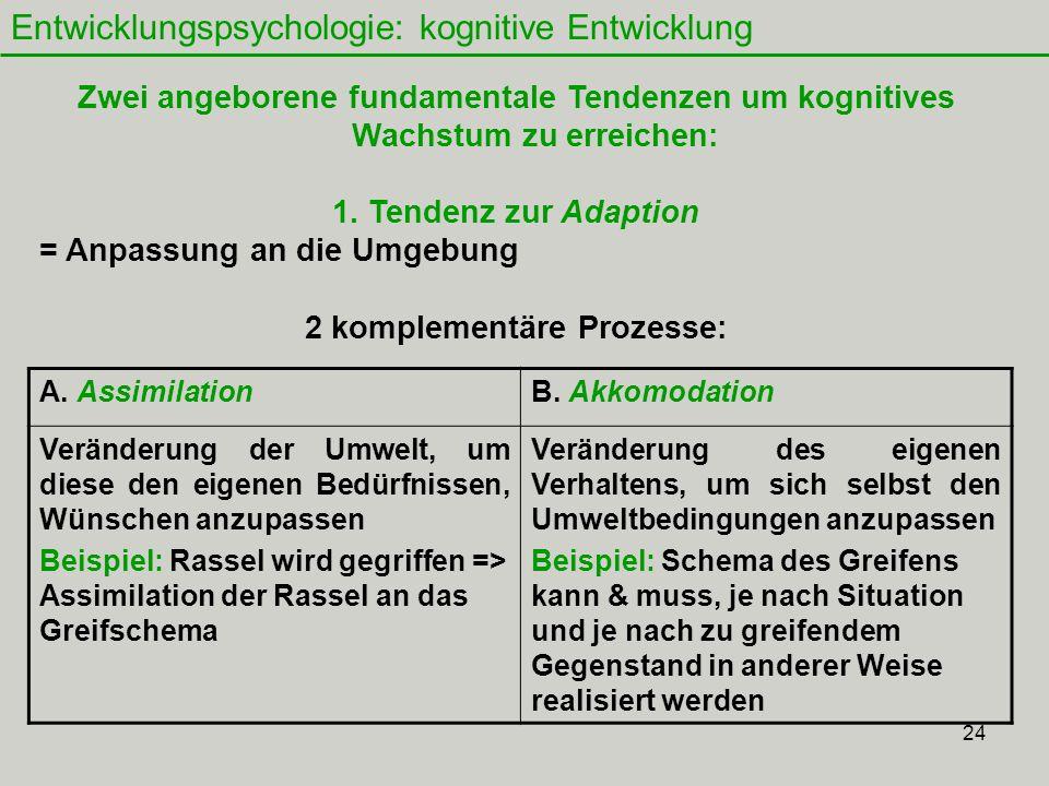 24 Entwicklungspsychologie: kognitive Entwicklung Zwei angeborene fundamentale Tendenzen um kognitives Wachstum zu erreichen: 1.