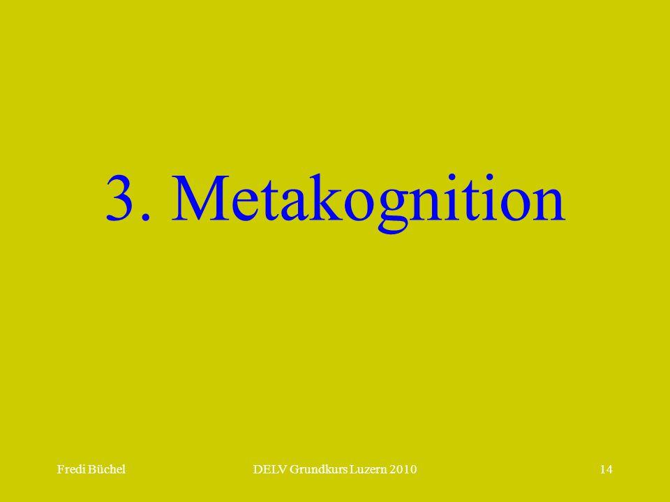 Fredi BüchelDELV Grundkurs Luzern 201014 3. Metakognition