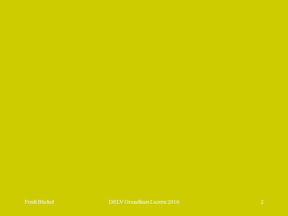 Fredi BüchelDELV Grundkurs Luzern 201013 Vergleich zwischen Lernen, Denken und Problemlösen Lernen: Mithilfe kognitiver Prozesse (auch Strategien genannt) reorganisieren und erweitern wir unsere Wissensstruktur.