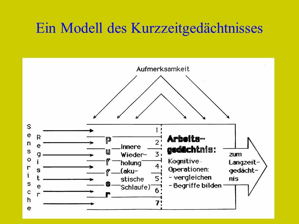 Fredi BüchelDELV Grundkurs Luzern 20104 Ein Modell des Kurzzeitgedächtnisses