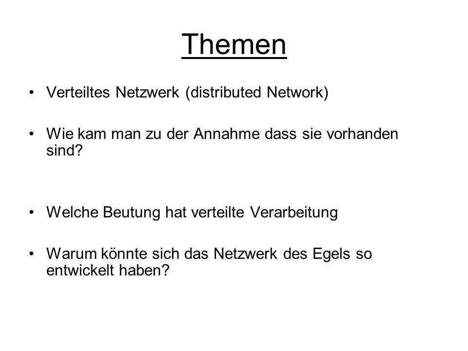 Themen Verteiltes Netzwerk (distributed Network) Wie kam man zu der Annahme dass sie vorhanden sind? Welche Beutung hat verteilte Verarbeitung Warum k
