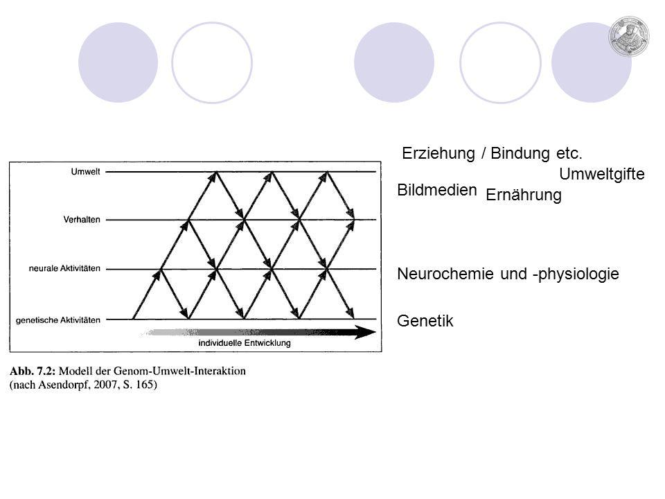 Genetik Bildmedien Ernährung Umweltgifte Neurochemie und -physiologie Erziehung / Bindung etc.