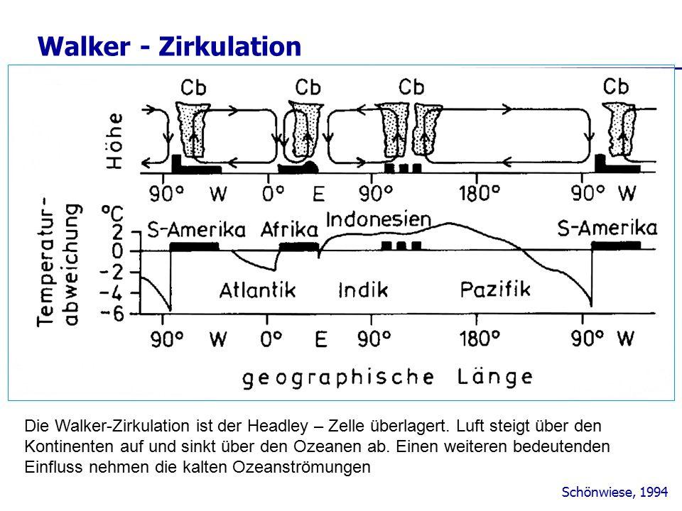 Walker - Zirkulation Schönwiese, 1994 Die Walker-Zirkulation ist der Headley – Zelle überlagert. Luft steigt über den Kontinenten auf und sinkt über d
