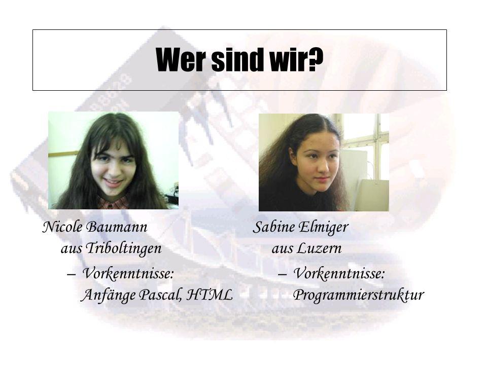Nicole Baumann aus Triboltingen –Vorkenntnisse: Anfänge Pascal, HTML Sabine Elmiger aus Luzern –Vorkenntnisse: Programmierstruktur Wer sind wir?