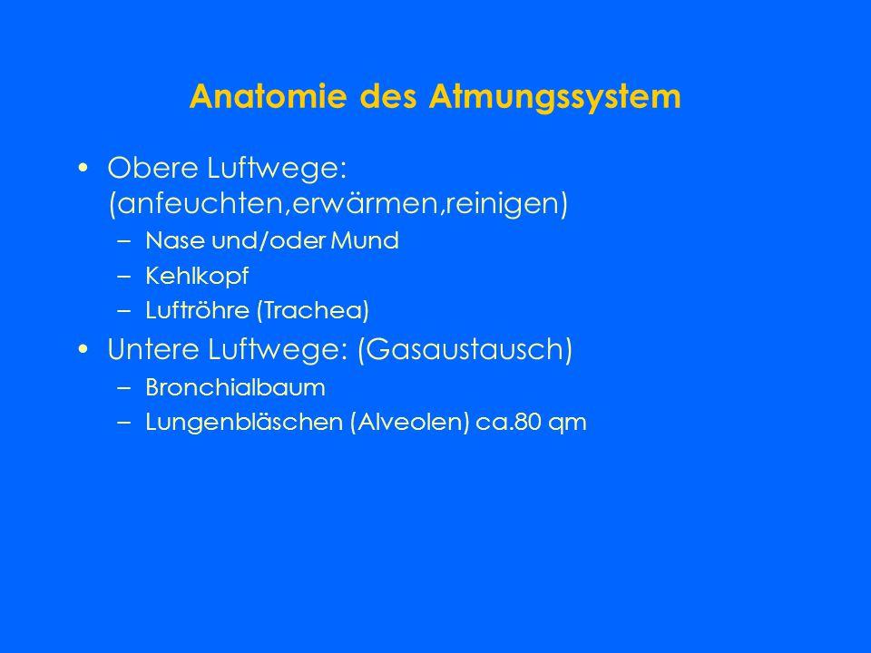 Organsysteme Sind funktionelle Einheiten, die aus mehreren Organen bestehen Atmungssystem Herz-Kreislaufsystem Verdauungssystem Harn- und Geschlechtso