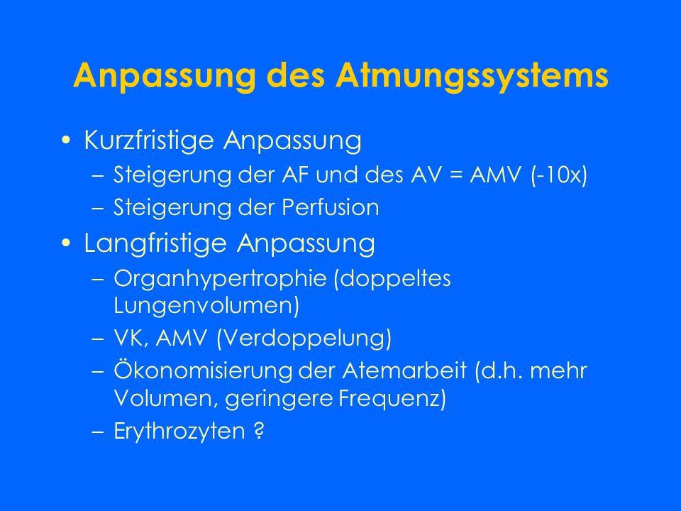 Spirometrie Atemzugsvolumen (Vt): 0,5 l Atemfrequenz (f): 12-18 Atemminutenvolumen (VE): 8-10 l Vitalkapazität (VK): 3-5 l Residualvolumen (RV): 1-2 l
