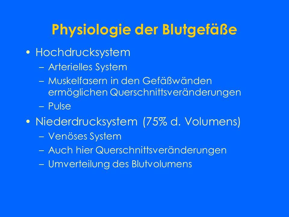 Physiologie der Blutgefäße Hochdrucksystem –Arterielles System –Muskelfasern in den Gefäßwänden ermöglichen Querschnittsveränderungen –Pulse Niederdrucksystem (75% d.