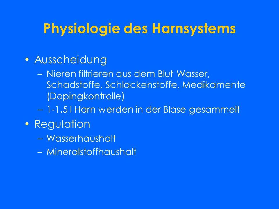Harnsystem