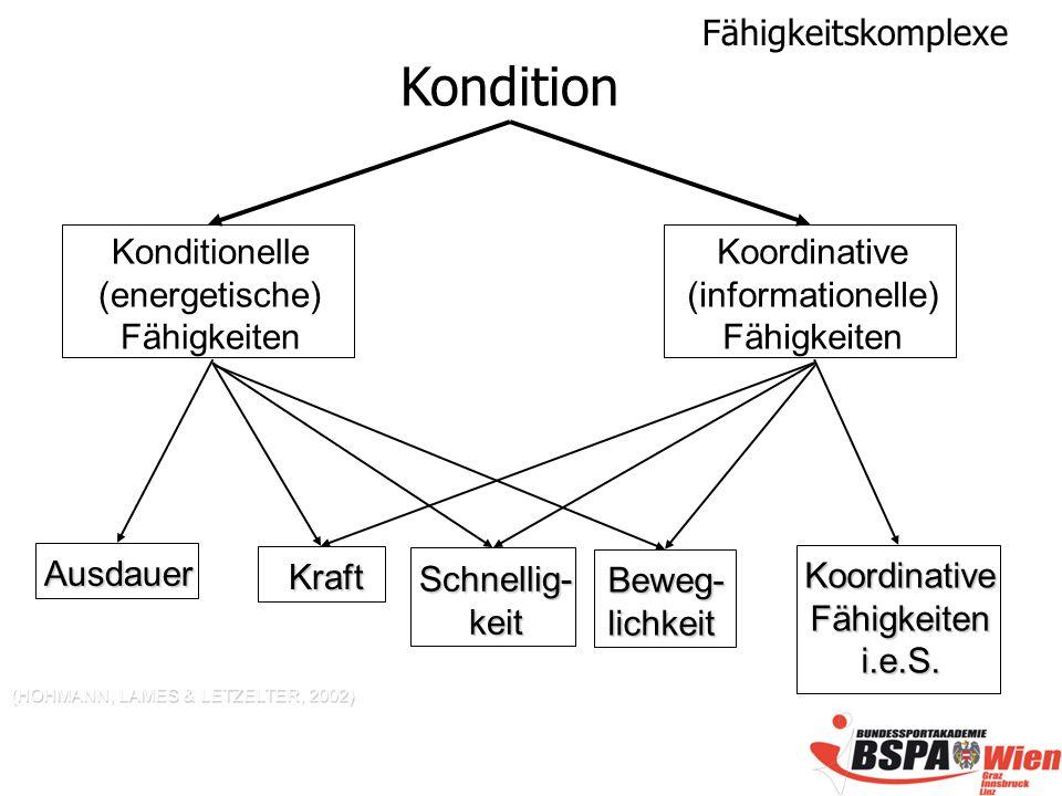 Fähigkeitskomplexe (HOHMANN, LAMES & LETZELTER, 2002) Ausdauer KoordinativeFähigkeiteni.e.S.
