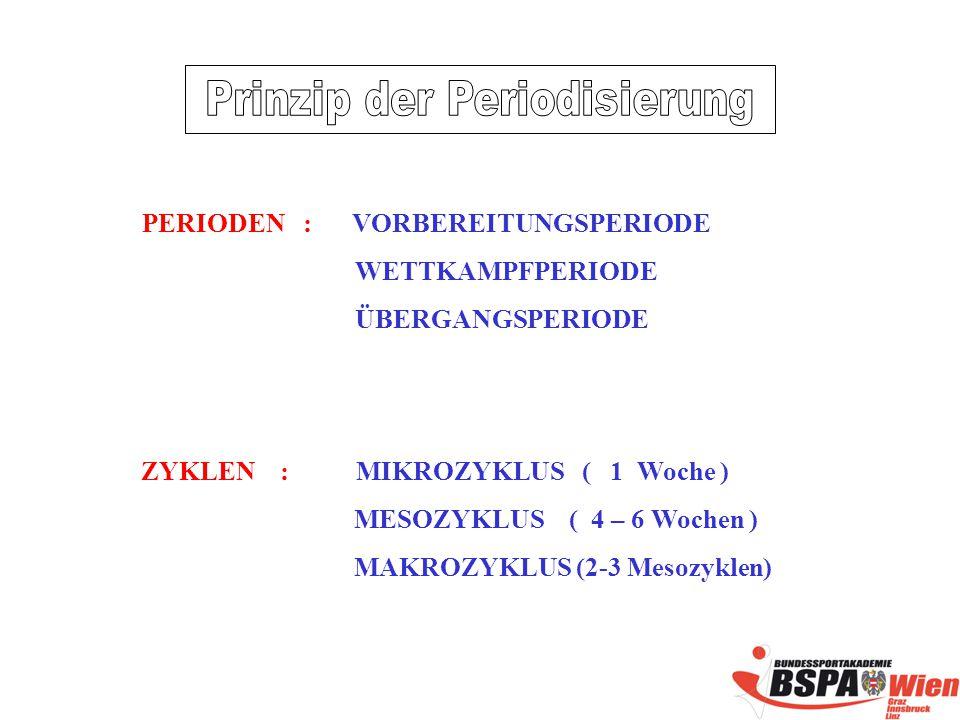 PERIODEN : VORBEREITUNGSPERIODE WETTKAMPFPERIODE ÜBERGANGSPERIODE ZYKLEN : MIKROZYKLUS ( 1 Woche ) MESOZYKLUS ( 4 – 6 Wochen ) MAKROZYKLUS (2-3 Mesozyklen)