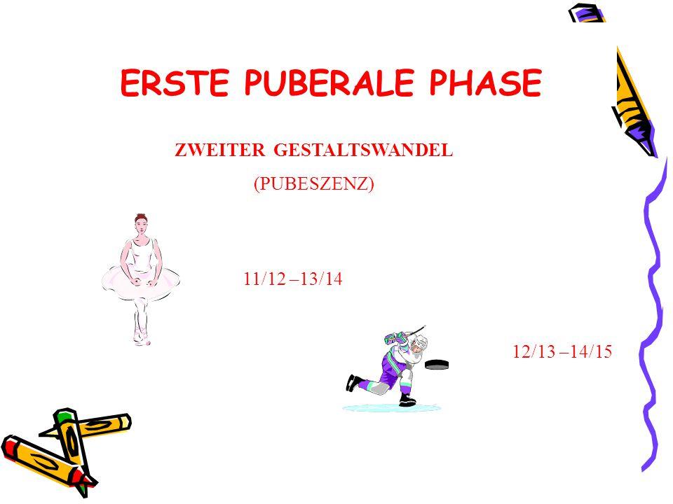 ERSTE PUBERALE PHASE ZWEITER GESTALTSWANDEL (PUBESZENZ) 11/12 –13/14 12/13 –14/15