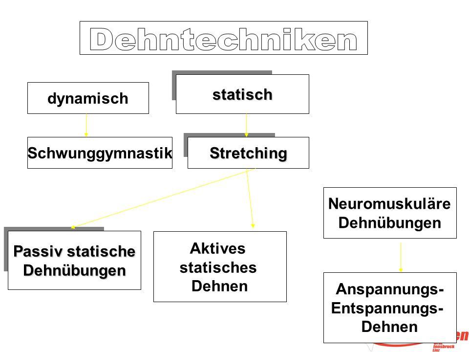 dynamisch Stretching Schwunggymnastik statisch Passiv statische Dehnübungen Neuromuskuläre Dehnübungen Anspannungs- Entspannungs- Dehnen Aktives statisches Dehnen