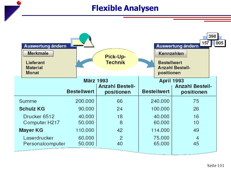 Seite 101 Flexible Analysen