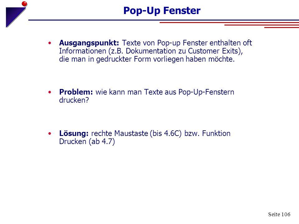 Seite 106 Pop-Up Fenster Ausgangspunkt: Texte von Pop-up Fenster enthalten oft Informationen (z.B. Dokumentation zu Customer Exits), die man in gedruc