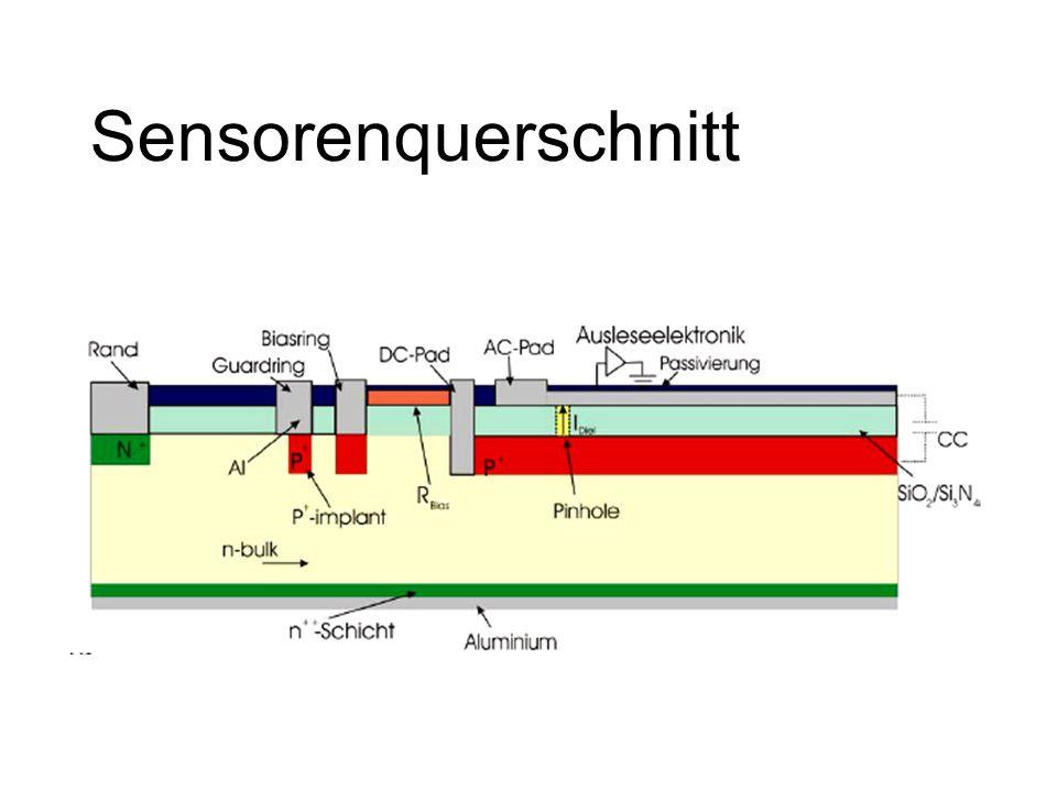 Sensorenquerschnitt