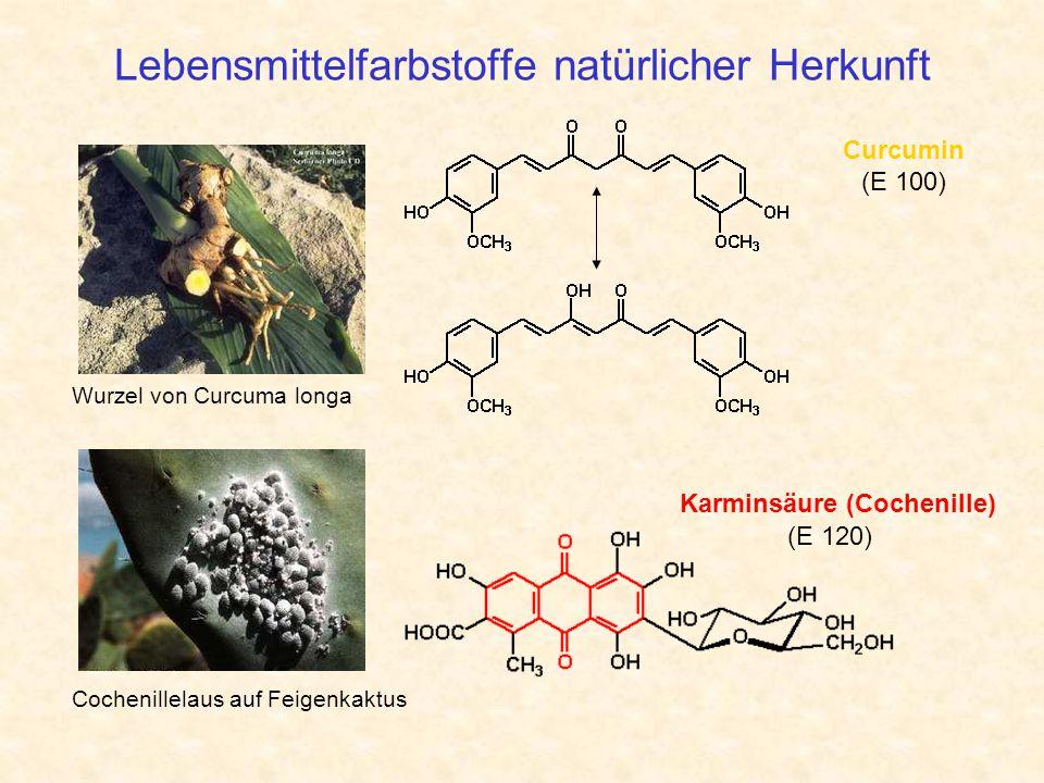 Lebensmittelfarbstoffe natürlicher Herkunft Cochenillelaus auf Feigenkaktus Wurzel von Curcuma longa Curcumin (E 100) Karminsäure (Cochenille) (E 120)