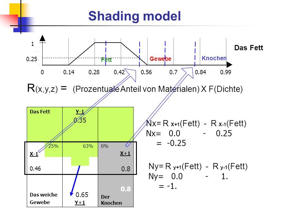 R (x,y,z) =  (Prozentuale Anteil von Materialen) X F(Dichte) Shading model Das FettY-1 0.35 X-1 0.46 25%63%0% X+1 0.8 Das weiche Gewebe 0.65 Y+1 0.8
